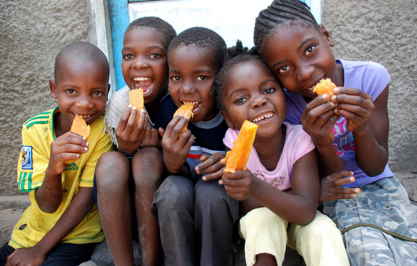 Talking Biotech: The story of a vitamin-infused sweet potato that helped  cut Africa's infant mortality 25 percent | Genetic Literacy Project