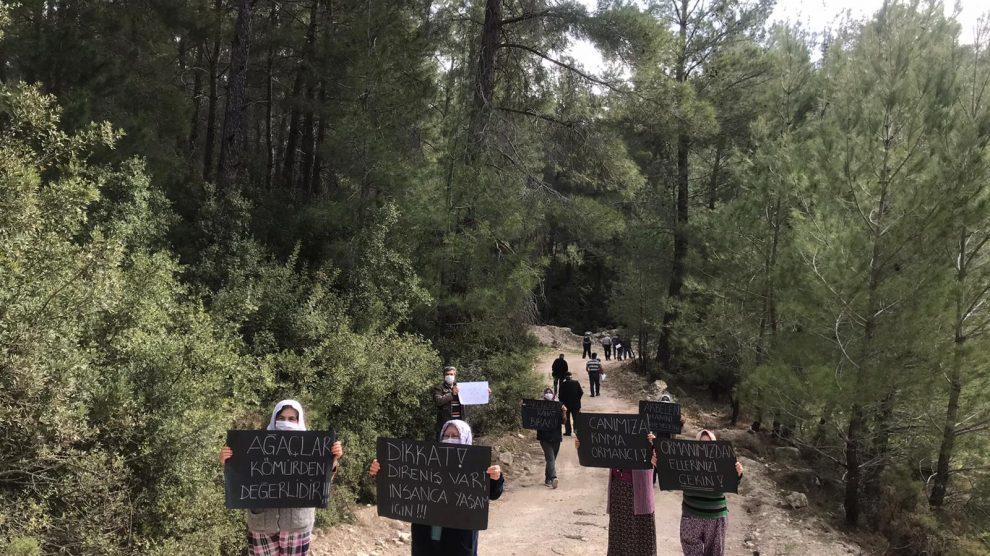 Erdoğan Orman Varlığını Artırdığını Anlatıyor, İkizköylüler Kömür Madenine Karşı Ormanlık Alanlarına Sahip Çıkıyor!
